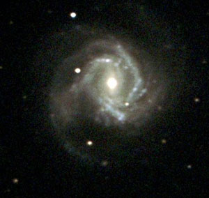 m61x90_crop_for_web.jpg